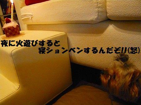s-2009_0909_215315-P1010888.jpg