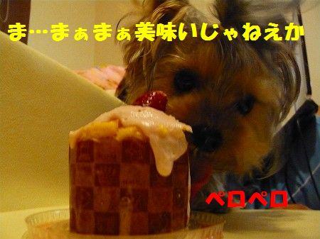 s-2009_0909_220832-P1010897.jpg