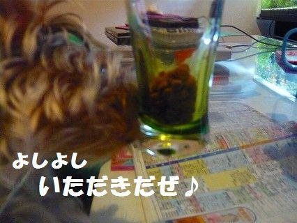 s-P1010092.jpg