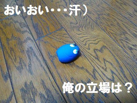 s-P1010499.jpg