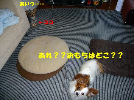s-P1010814.jpg