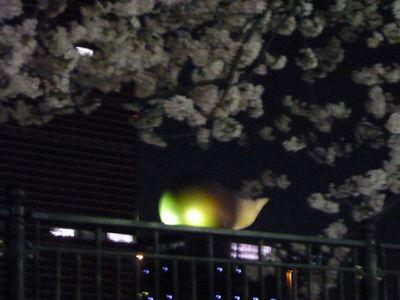 うんこビルと桜