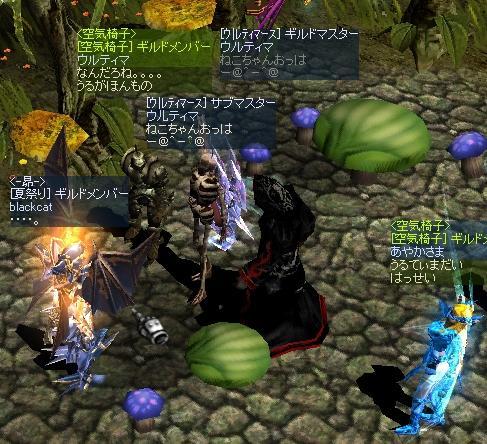 本物あてゲーム(-ω☆)