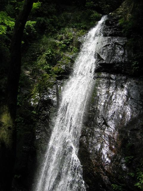seireiの滝3