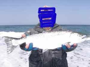 2010.4.4海サクラ島牧ニコパチ修正