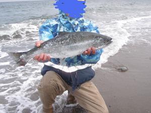 2010.島牧 海サクラ