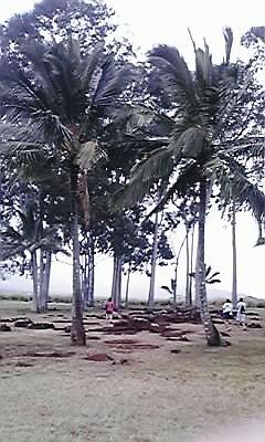 ハワイ・ヘナウ