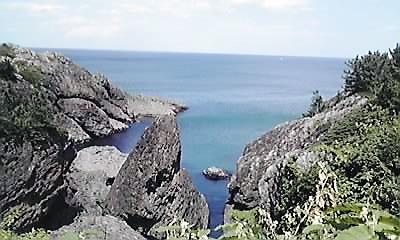 種差海岸岩礁