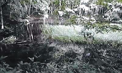 十和田鏡沼