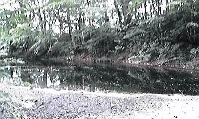 十和田瓢箪沼