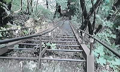 十和田神社湖面への梯子