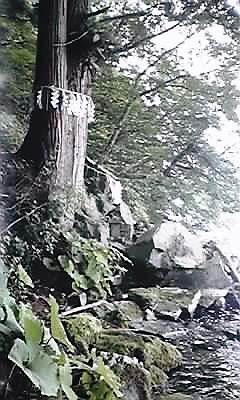十和田神社占い場