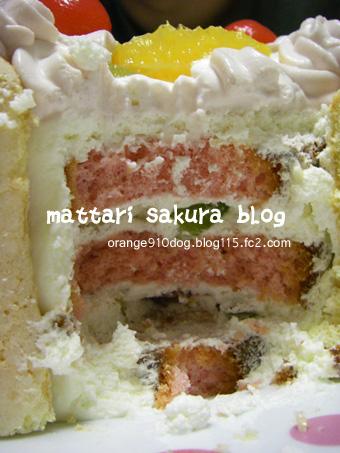 cake断面図