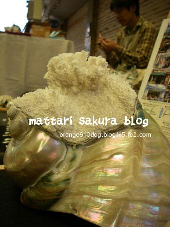 yakougai.jpg