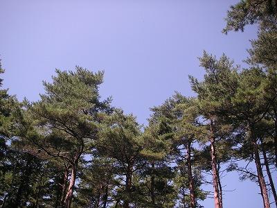富士スバルランドドギーパーク
