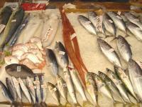 久礼大正市場魚屋