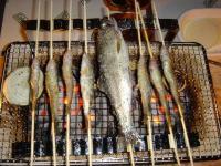 湯の原温泉キャンプ 魚