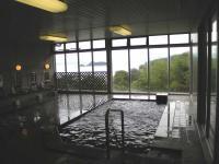 庵治観光ホテル 海のやどり 女風呂 内風呂