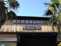 泉佐野 漁業共同組合 青空市場