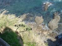 大王埼灯台からの眺め