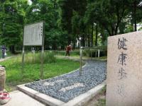 桃山公園 健康歩道