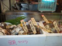 京橋とっつあん お魚1