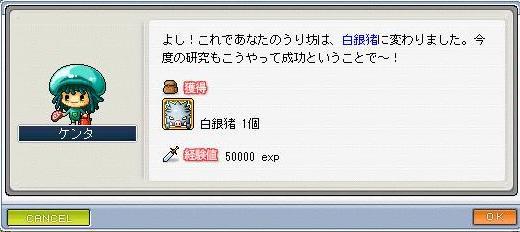 ss8_20100131184942.jpg