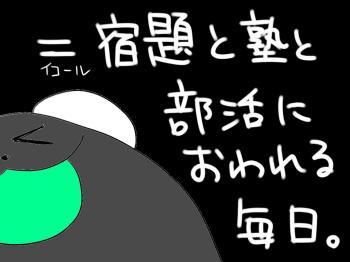 PAND26_convert_20100324175131.jpg