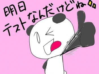 pand19_convert_20100131200053.jpeg