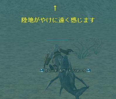 20051105171628.jpg