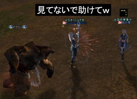 20051230131347.jpg