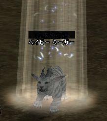 20060319231521.jpg