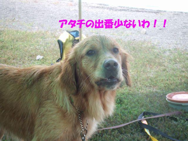 121_20080916225907.jpg