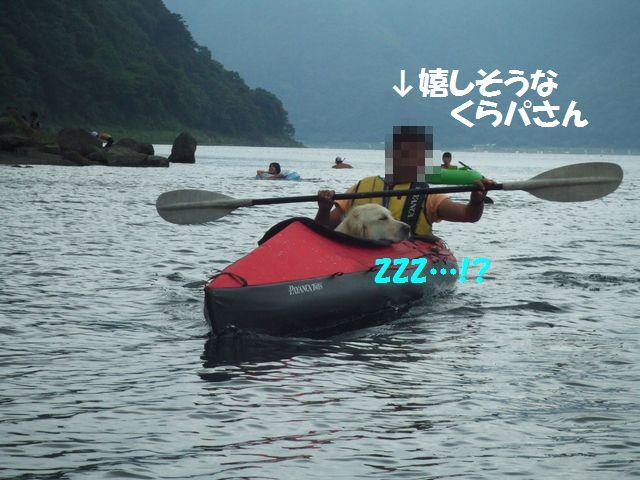138_20080816131711.jpg