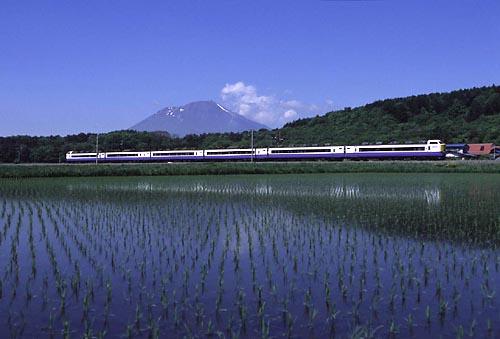 3805_5_hatsukari.jpg
