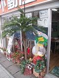 gazou_20090712202854.jpg