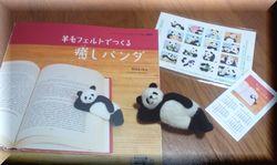 panda4-1.jpg