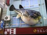 新橋に進出した、激安ふぐ料理店。立体看板が大阪チック。