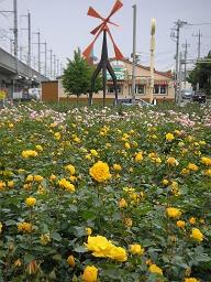 花畑と風車…オランダじゃないよ。