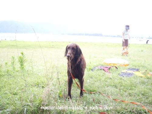 biwako-alo_20090817213012.jpg
