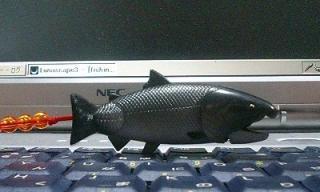 salmon2.jpg