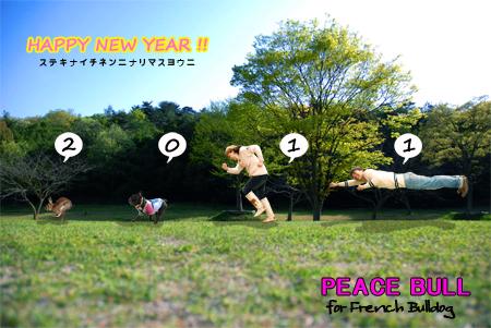 2011-PEACE-BULL.jpg
