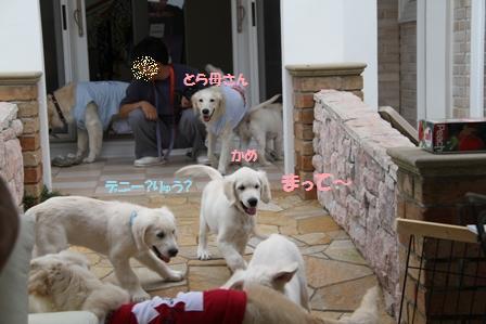 21_20100622155043.jpg