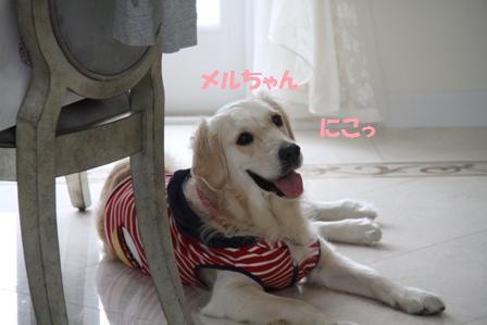 37_20100622155400.jpg