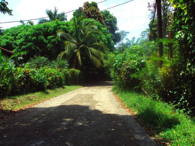 th_アルゲブラへの道2