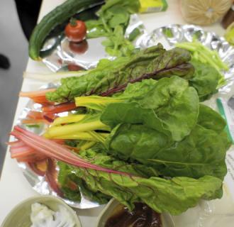 採れたて野菜2