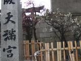 2008_03010003.jpg