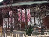 2008_03010010.jpg