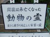 2008_05300021.jpg