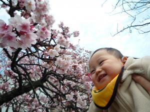 0202 あたみ桜6